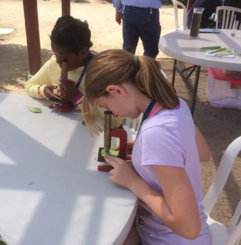 4-H Youth Education